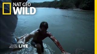 Survivor Story | Shark Attack Experiment Live!