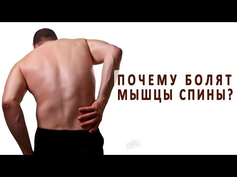 На спине болят мышцы