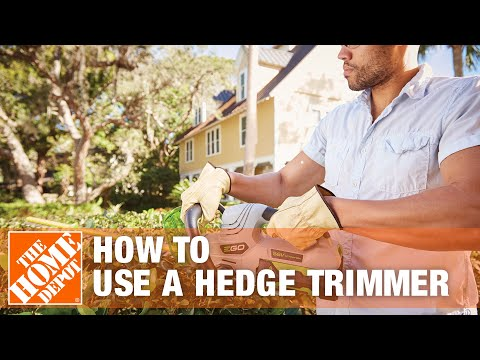 How To Trim A Shrub With A Hedge Trimmer The Home Depot
