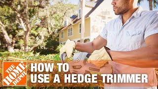 How To Trim a Shrub With a Hedge Trimmer - The Home Depot