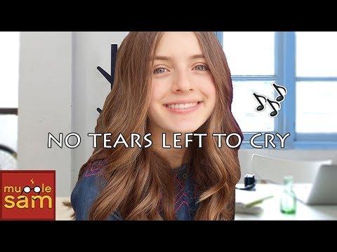 No Tears Left To Cry - Ariana Grande 🎵 Sophia Mugglesam