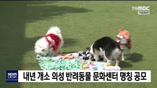 의성 반려동물 문화센터 새 이름 공모 / 안동MBC