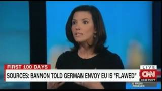 reports that bannon told german envoy eu is flawed wh denies this report