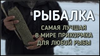 видео Ароматизаторы для рыбалки на карпа в МИНСКЕ