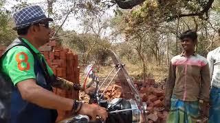 Man rescuing snake Venomous(Common krait) snake rescue team Panchet dam(N G O)
