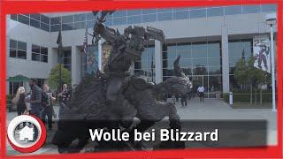 Wolle bei Blizzard