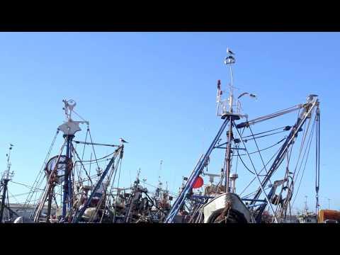 Port d'Agadir 2015