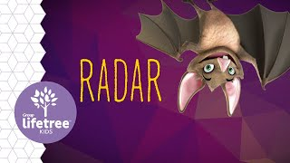 Radar the Bat | Buzzly's Buddies | Cave Quest VBS