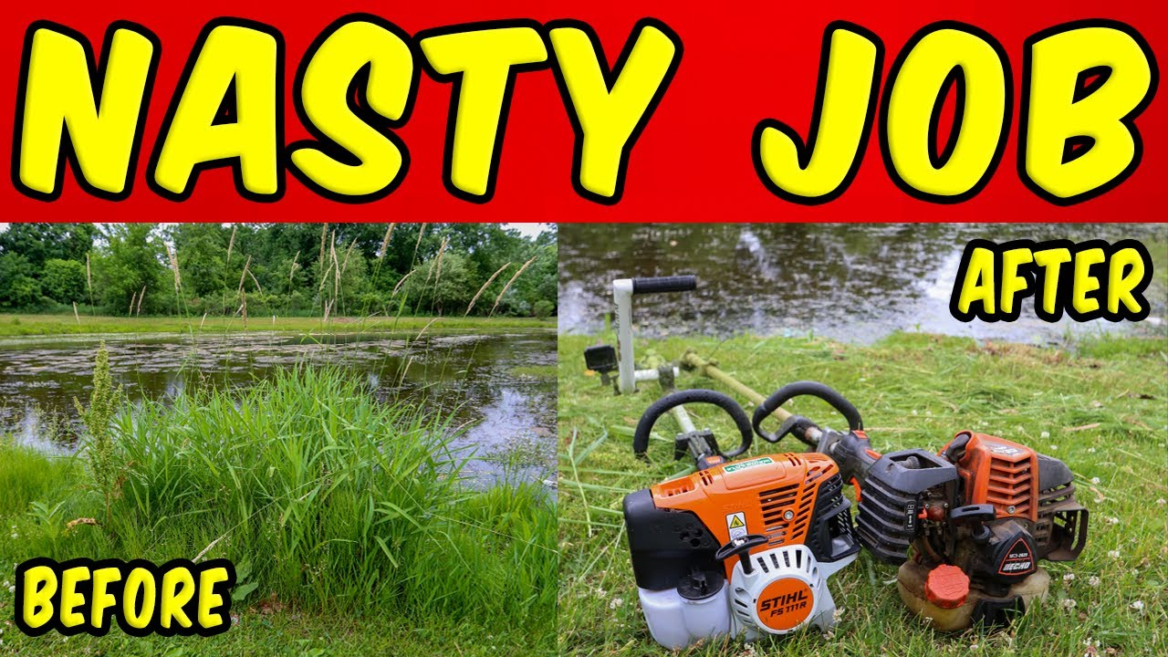 The NASTIEST Job EVER!! [Clearing Out A Pond] (Oddly Satisfying)