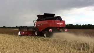 Versatile RT490 combine in OSR Lincolnshire 2015