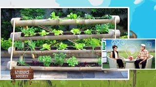 เกษตร Society 11/11/57 : ว�...
