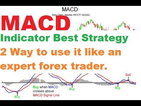 MACD Indicator Strategy  100% working MACD indicator