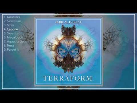 Terraform - Boreal Forest (Full Album) [2017]