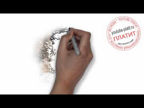 Питбуль нарисованный карандашом поэтапно 129