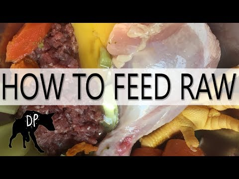 How to make Raw Dog Food | Raw Feeding Guide #1
