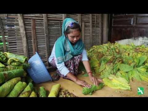Children Labor in Indonesia