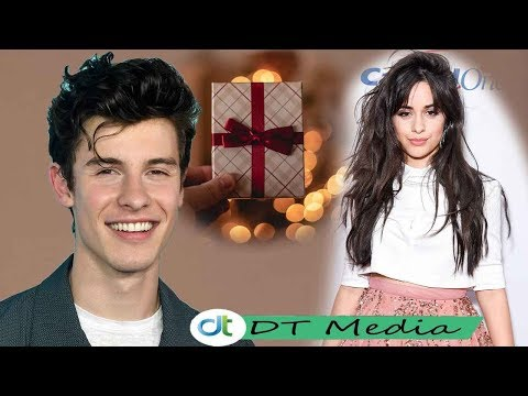 Camila Cabello Celebrates Shawn Mendes' 21st Birthday With A Special Gift