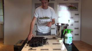 Sowing Thyme Seeds
