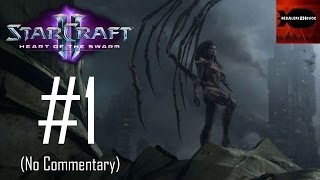 StarCraft 2: Heart of the Swarm - Campaign Playthrough  Part 1 (No commentary, Mission 1) RE-UPLOAD