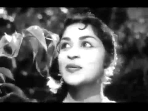 Kattugulle Thiruvizha Video Song   Thai Sollai Thattadhe   MGR, Saroja Devi