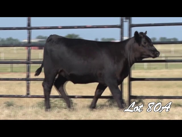 Pollard Farms Lot 80A