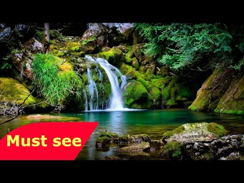 NATIONAL GEOGRAPHIC   The Garden Of Eden    Full Mystery Documentary