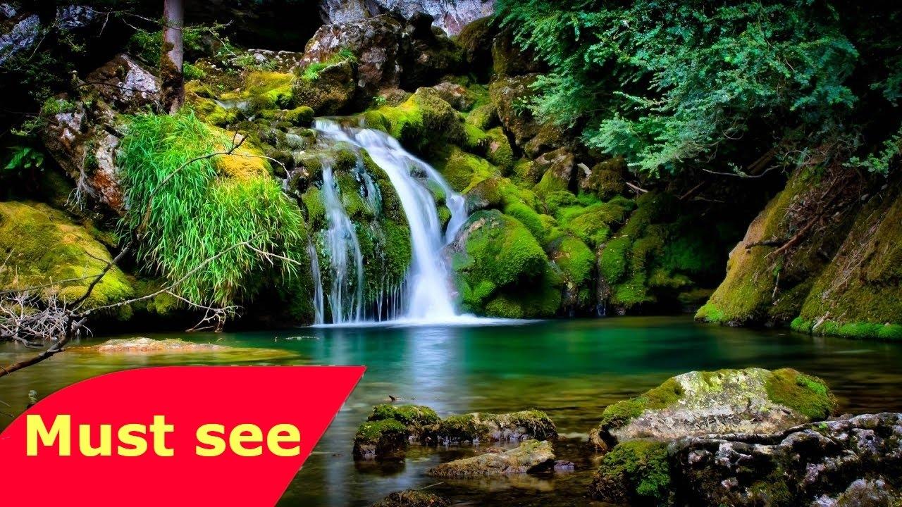 NATIONAL GEOGRAPHIC The Garden Of Eden Full Mystery Documentary - YouTube