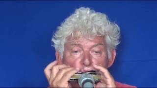 Tims Tiny Tunes #297   BLUES, level 1, Harmonica play-along lessons   Jazz harmonica licks (lr)