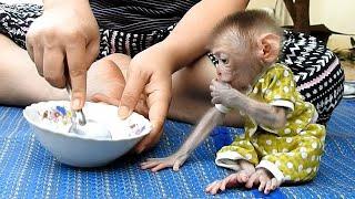 OMG!! Mom Feed White Porridge …