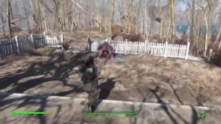 Где найти собаку Fallout 4