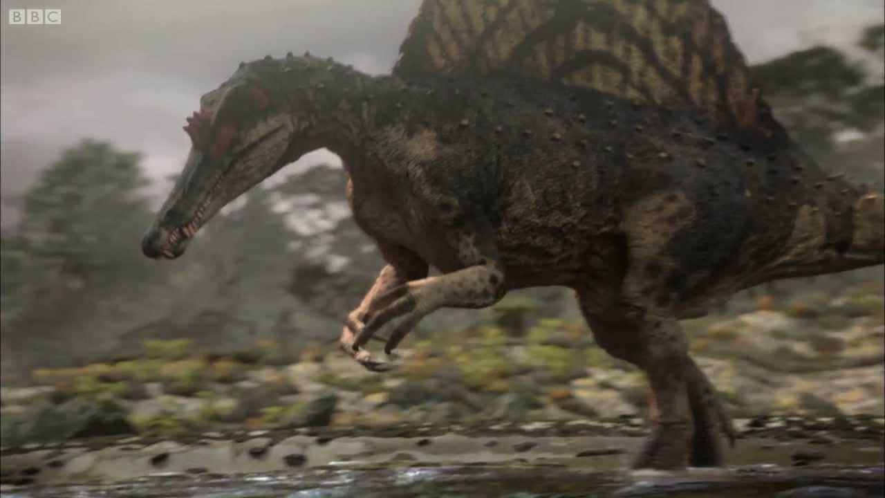 spinosaurus planet dinosaur bbc 1 youtube