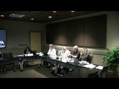 5 25 17 Vaya Board of Directors Meeting