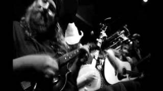 trampled by turtles - silver and gold