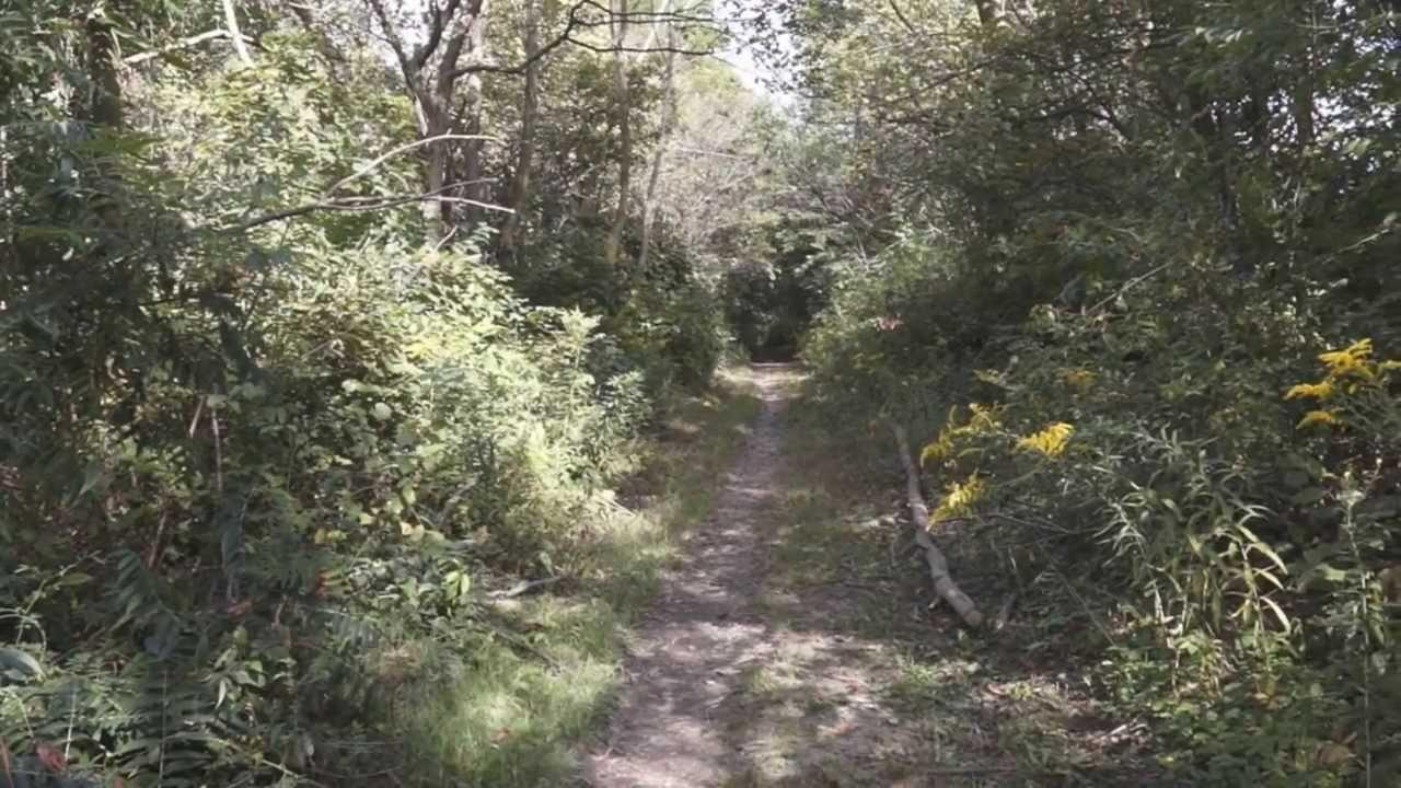 Van Buren State Park, OH - YouTube