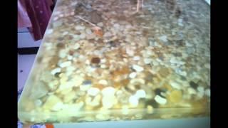 столешница с применением натуральной морской гальки(, 2013-06-04T05:22:42.000Z)