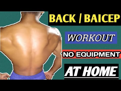 home back  biceps workout no gym no equipment  youtube