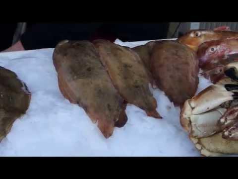 Étal de poissons sur le port de Boulogne