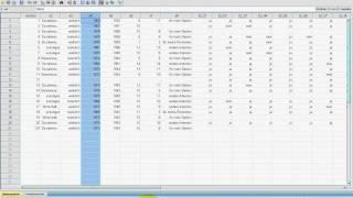 SPSS Video-Seminar #  Teil 11: Datenexploration -- Diagrammvorlagen speichern