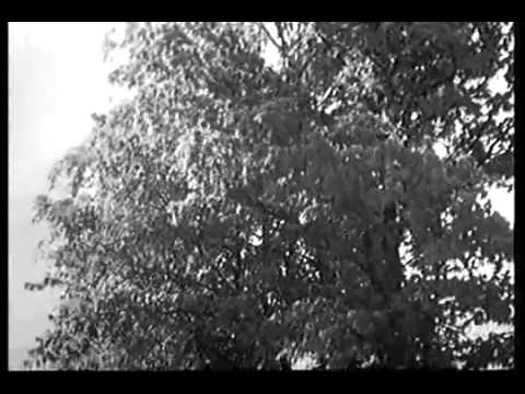 Микс– Ольга ВОРОНЕЦ -  Деревенька моя