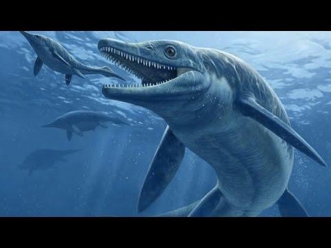 Top 5 thủy quái khổng lồ đáng sợ nhất thời tiền sử