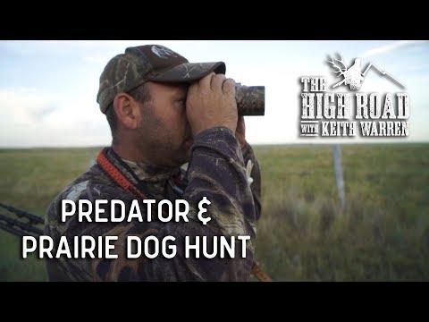 Predator & Prairie Dog Hunting | The High Road With Keith Warren