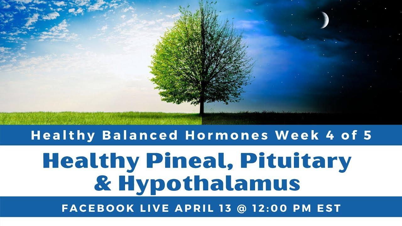 Week 4: Healthy Pineal, Pituitary & Hypothalamus