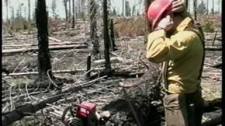 Wildland Fire Chain Saws - Part 3 - Bucking: Bottom Bind