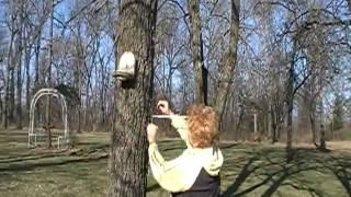 Ez Limb By Herron Outdoor Products Bird Feeder Install