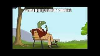 Birds afraid of heights