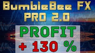 Forex arbitrage trading software BumbleBee FX | Profit +130 %