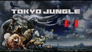Tokyo Jungle Ps3 (Parte 1 Tecnicas de Caza y Apareamiento xD...) Gameplay Comentado