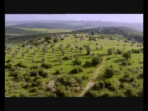 ISRAEL - Land Der Bibel - Land Des Glaubens