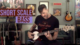 Ernie Ball Music Man short-scale StingRay bass demo