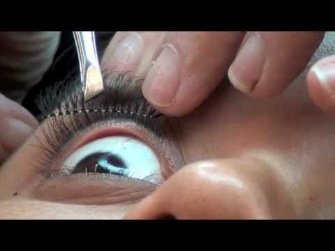 181c16f27f2 Strip Eyelashes class; How to apply it with glue and tweezers by Esther  Bolkin - YouTube
